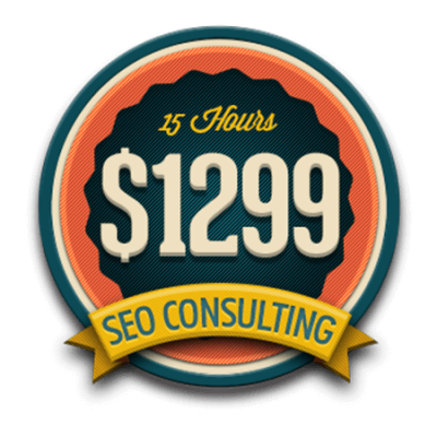 15 Hours SEO Consulting