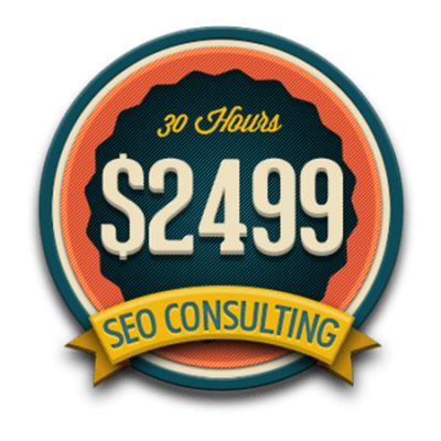 30 Hours SEO Consulting