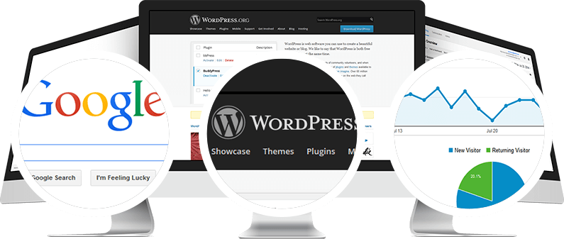 WordPress SEO Consulting